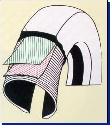 Радиальная шина